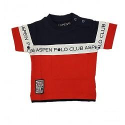 T-shirt neonato tricolore ASPEN POLO CLUB art. 1076M0107